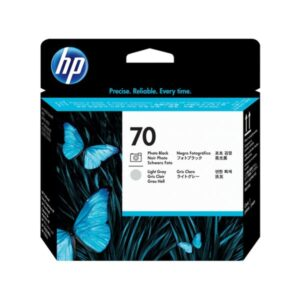 HP 70 Photo Black & Light Gray Designjet Printhead